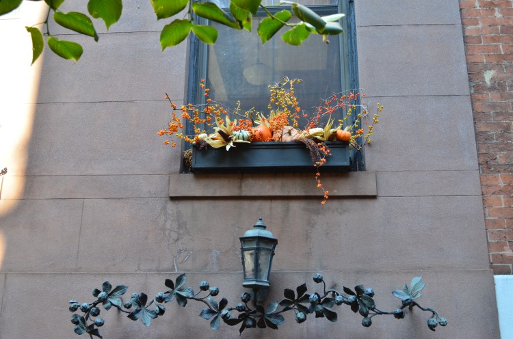 A Greenwich Village window; Belongs to: Gabriela Yareliz