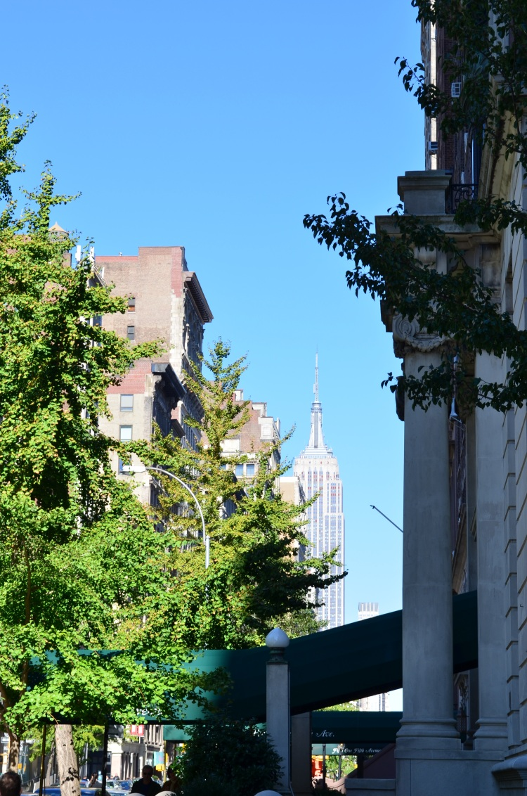 The Empire State Building (blocks away, from the Village); Belongs to: Gabriela Yareliz