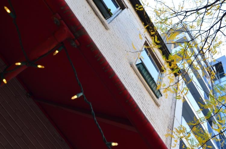 Look up; Tribeca; Belongs to: Gabriela Yareliz